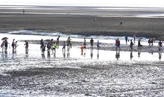 議員批升格10年海線汙水建設零進度! 水利局:市府逐步推動