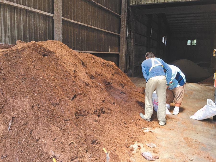 苗栗市公所呼籲民眾確實分類垃圾、廚餘,並回收廚餘加工製成有機培養土,開放民眾自備容器免費索取。(何冠嫻攝)