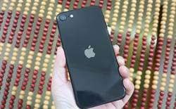 愛瘋挖趣》iPhone 12系統iOS 14亮相 重點一次抓