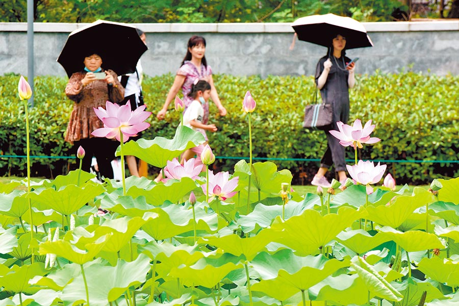 端午假期最後一天,許多遊客選擇室外露天環境度過,圖為鄭州紫荊山公園。(新華社資料照片)