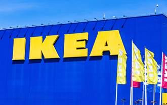 IKEA外帶店賣49元「銅板早餐」 女大生一吃超驚豔
