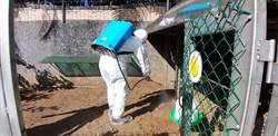校園雞隻生病 師生擔憂求助動保處