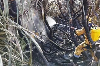 綠島雜草火警已撲滅  燃燒面積4公頃