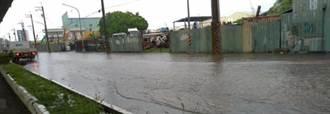 現在高雄可以淹水了?這張圖讓網友怒了:代理市長晨會開完沒?