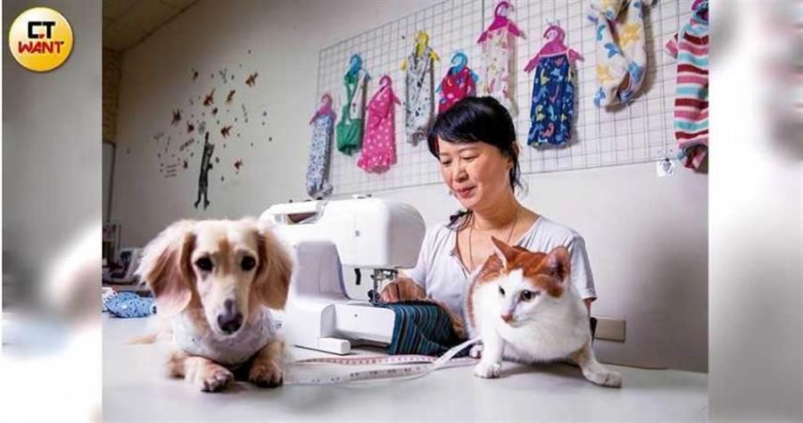 一時興起學習縫紉的陳淑貞,意外開啟網拍寵物衣事業。(圖/宋岱融攝)