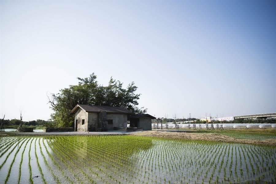 位於台南六甲區的菁埔埤抽水站,建造於1930年代。(本報資料照片)