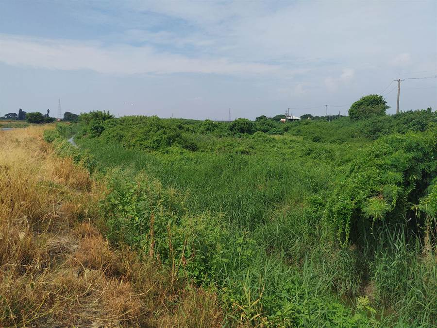 台南市政府打算在已遷葬的學甲第六公墓設置動保教育園區,土地面積約2公頃,其中1公頃將設置公園,目前正進行先期規畫作業,未來將持續與地方溝通。(莊曜聰攝)