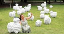 玩家帶路/穿越百年淡水 《詩步領羊》展覽如置山間