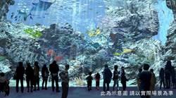 夢幻水族館「Xpark」在桃園!特色、票價一次報你知