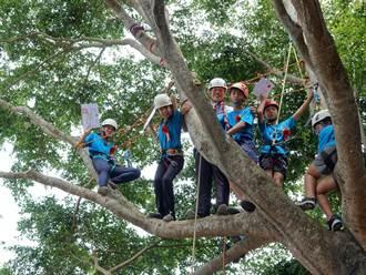 畢業證書在哪裡?香田國小畢業生得爬到樹上領