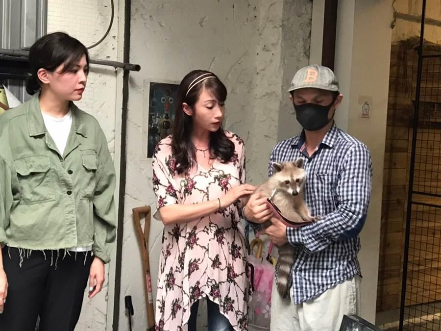 咖啡廳浣熊傳遭虐,台北市議員許淑華(左二)會同動保處前往稽查。(圖/摘自許淑華臉書)