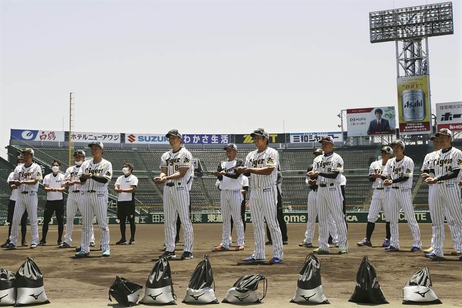 阪神虎隊開季最快10敗平中央聯盟紀錄。(美聯社資料照)