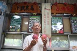 種芒果50年 產銷班長吳清進堪稱玉井芒果發展史活字典