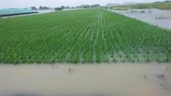 「農田水利災害防救系統」兼具災情通報與防救 預計年底建置完成