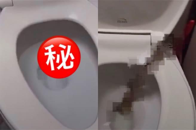 男子想上廁所,低頭一看竟是......(圖/翻攝爆廢公社)