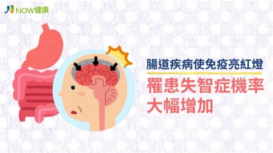 肚子有這疾病 罹患失智症機率竟大幅增加 (圖/NOW健康)