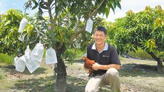 竹科工程師務農 有機蛋供不應求
