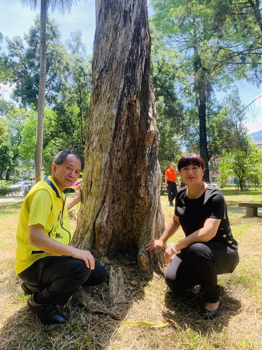 廖志城(左)和蔡培慧,關心演習林樹木健康情況。(廖志晃攝)