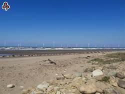 歐洲商會申請風電工作人員責任制 恐影響近700人