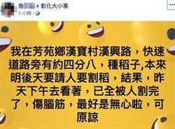 你愛在臉書Po文嗎?沒加分反而還幫倒忙