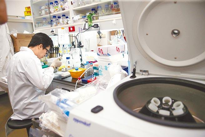 国内疫苗开发远远落后国际,台大公卫学者陈秀熙建议政府应该主责,让所有疫苗厂合作,否则国家队形同虚设。图为中研院团队实验室操作画面。(本报资料照片)