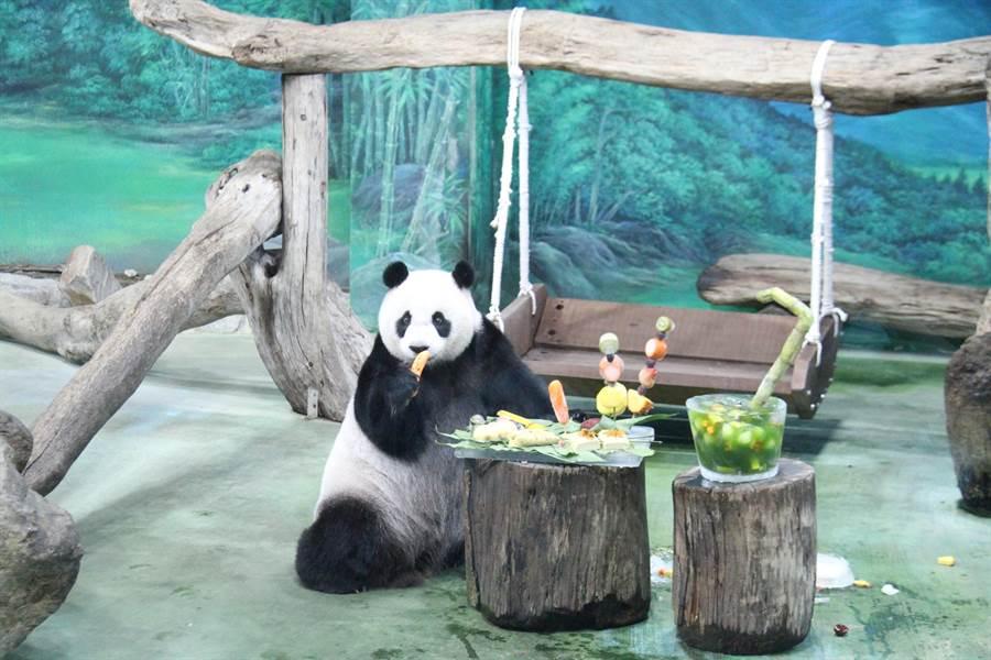 大貓熊「圓仔」今天慶祝7歲生日,園方精心準備由7種台灣特色小吃主題設計而成的特製蛋糕。(譚宇哲攝)