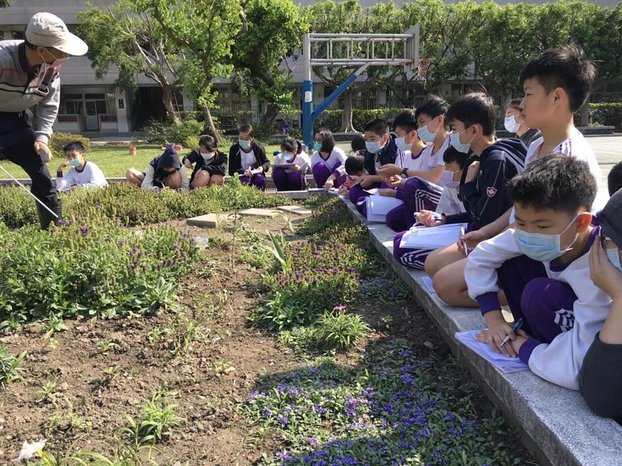 莒光國小學生在老師的指導下進行觀察及小詩寫作。(莒光國小提供)