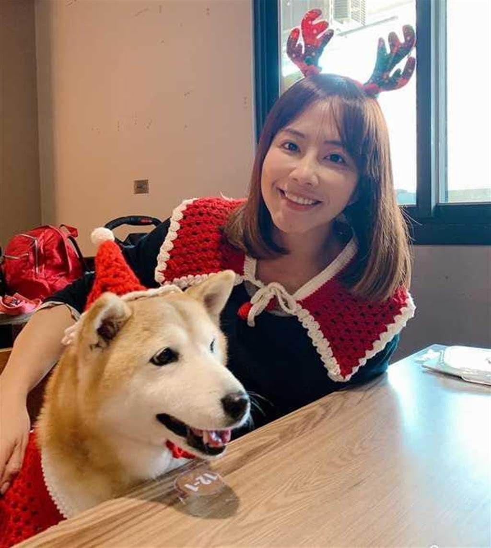 TVBS當家主播秦綾謙的愛犬近日身體不適,鄭勝哲還特地北上看狗,讓秦綾謙感動不已。(圖/翻攝畫面)