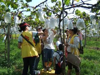 走跳農村夏令營開放報名 從小培植青少年留農
