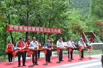 武陵農場京華吊橋啟用 跨七家灣溪人車分流
