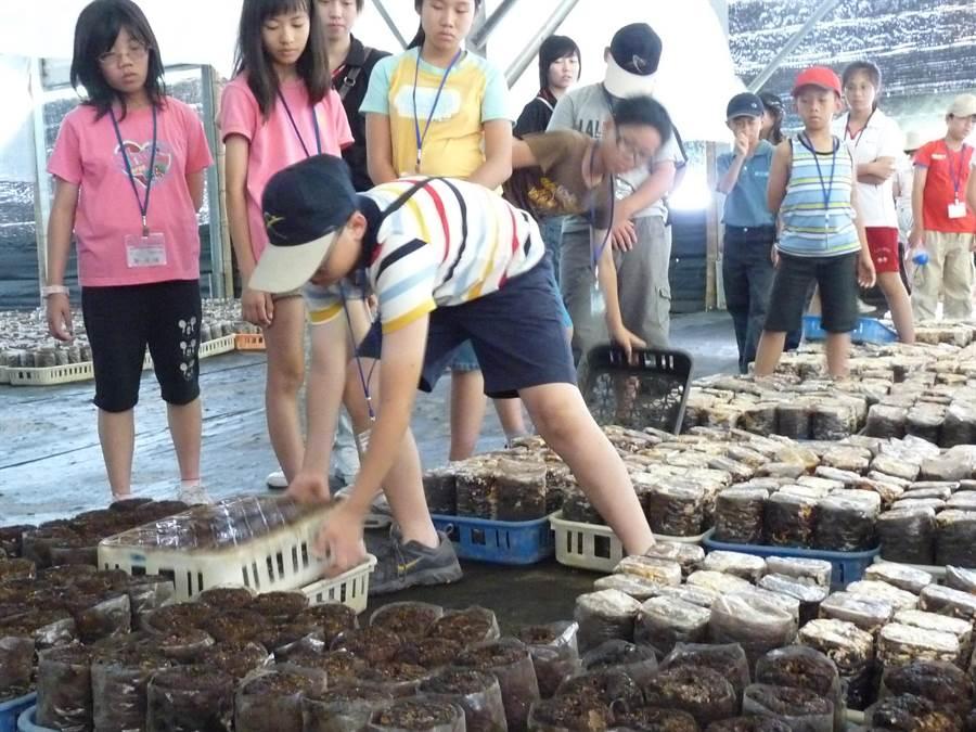 走跳農村夏令營結合農場生態介紹、農業體驗、農業操作等,從中引發青少年留農興趣。(台中市農會提供/王文吉台中傳真)