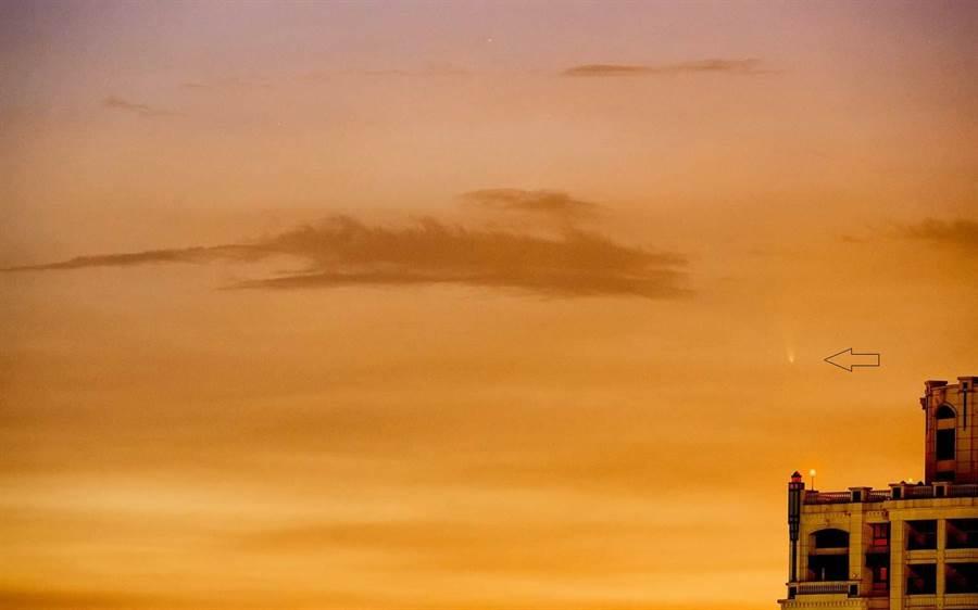 台灣天文同好吳聰奇先生,在高雄自宅所拍攝的彗星(箭頭處)。(吳聰奇提供)