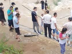 暴雨洪水肆虐水庫開閘 陸民眾乘機搶撈大魚