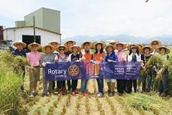 迎15周年 互動資通認養稻田