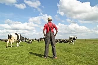 精蟲上腦?印55歲男闖牧場洩欲 強押母牛啪啪啪