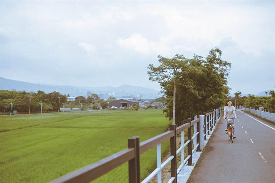 與其他位於台北的河堤景致不同,無盡的田園綠意是關渡平原自行車道的最大特色。(圖/台北畫刊提供、莊智淵攝)