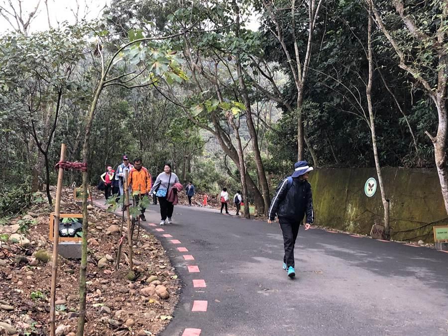 員林市藤山步道全長4公里,是熱門的健行休憩人氣步道,除了登山健行,也吸引慢跑者和單車族來此。(員林市公所提供/謝瓊雲彰化傳真)