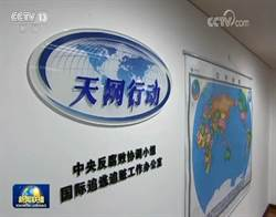 陸中紀委:「天網2020」已追回外逃人員589人