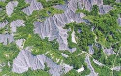 龍崎世界級地景畫工業區 惹議