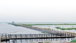 鄱陽湖發福 再現最美水上公路