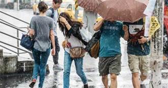 台中市突狂風暴雨!路樹倒插公車車窗...司機嚇傻