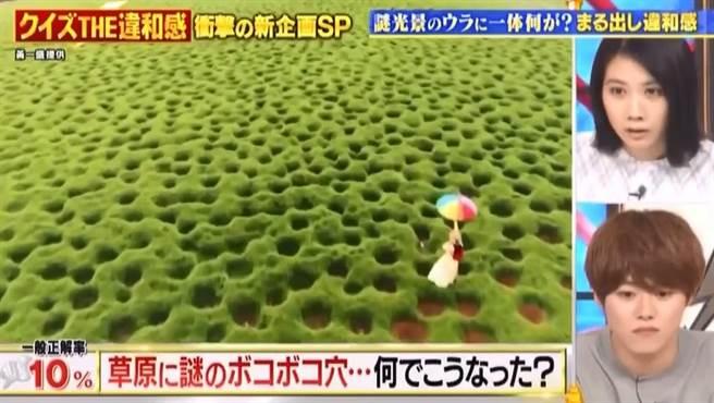 奇景!嘉義抹茶色「洞洞草原」爆紅 上日本節目