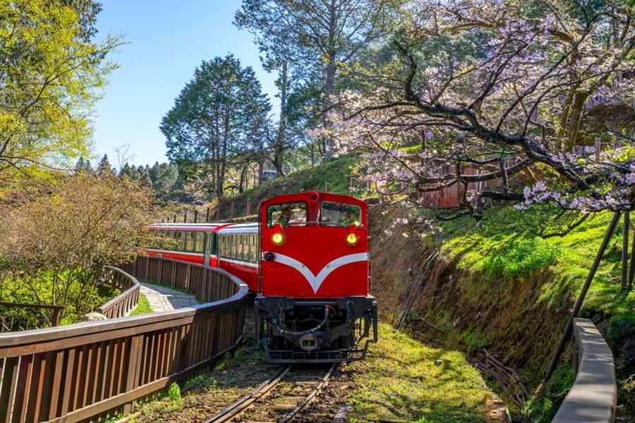 小確幸來了!林務局推國家森林遊樂區免費入園1次。(示意圖/Shutterstock)