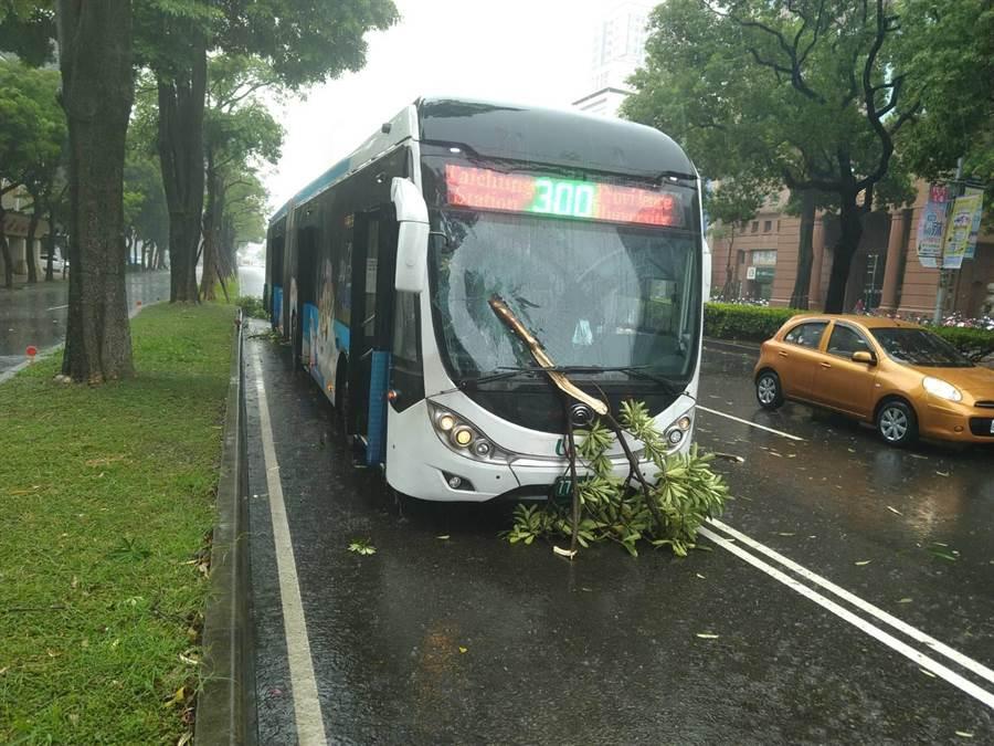 台中市今日中午一點多時,台中市忽然下起狂風暴雨,一輛三百號的雙節公車被倒伏的樹枝砸中。(台中市府提供/盧金足台中傳真)