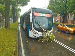 路樹因風雨折斷 飛插公車玻璃