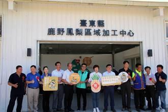 提升農村競爭力 鳳梨加工中心啟用