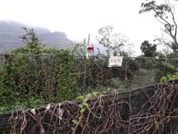 獼猴肆虐搶收農作 太平枇杷專區要設電網