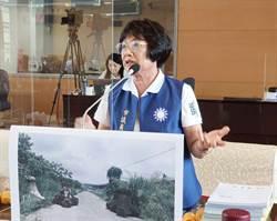 市議員羅永珍為民請命建議路平專案加強垂直與橫向連繫