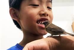 意外成為鳥媽媽 邵惠琴笑納5倍祝福