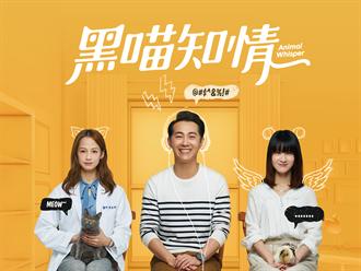 LINE年會》LINE TV台劇《黑喵知情》8月開播 再開兩檔短影音財經節目